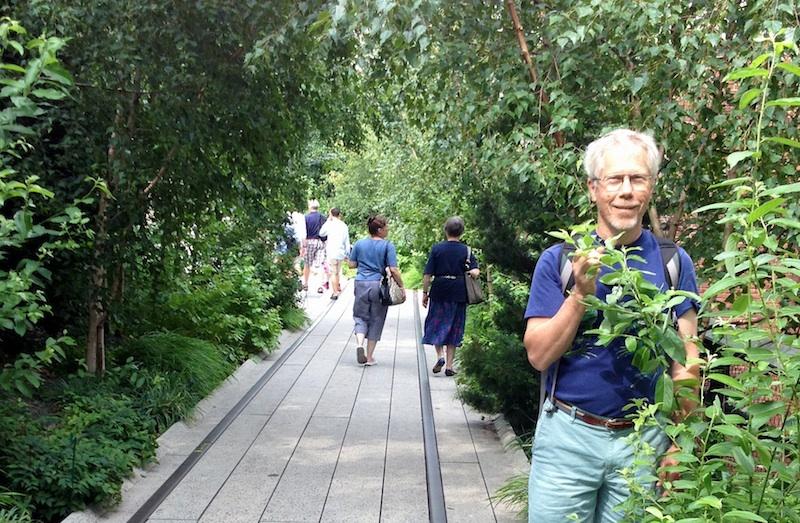 Author on New York City's High Line