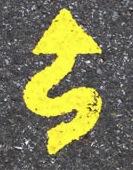 Savage Road Marking logo